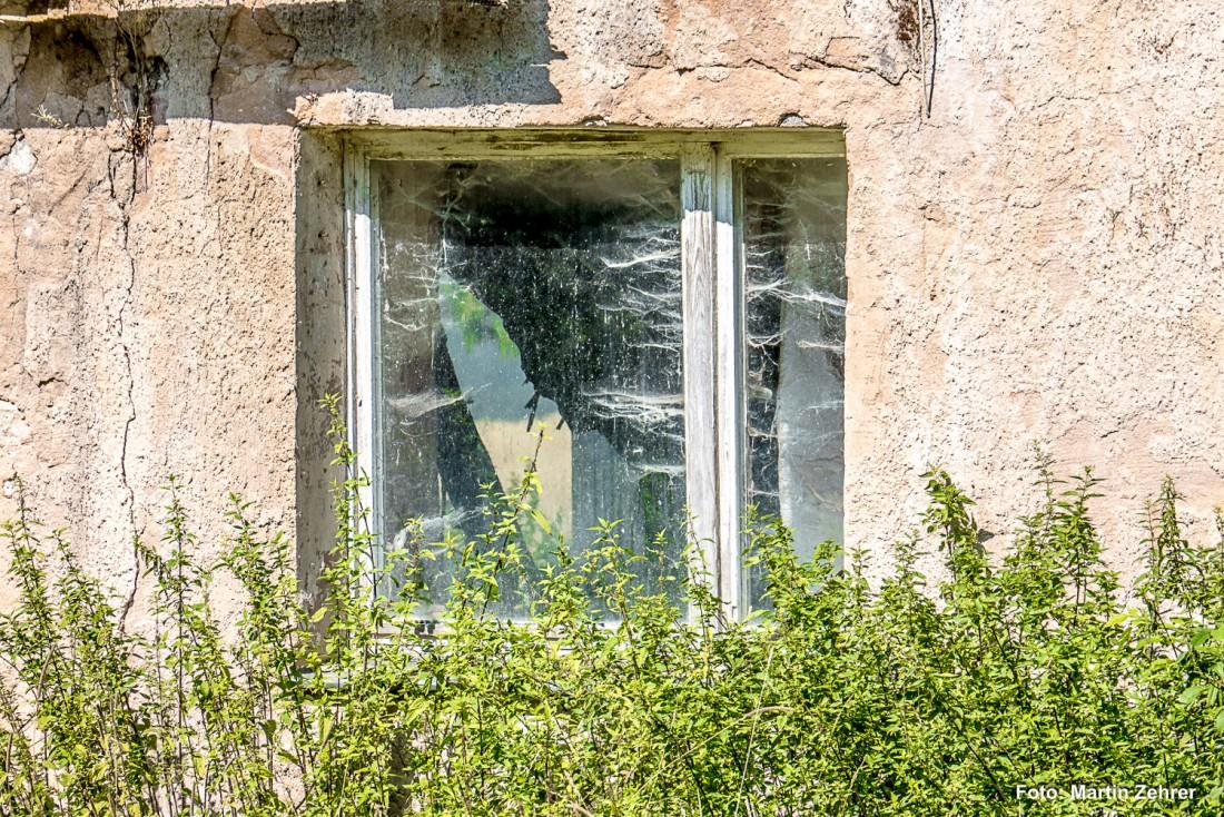 Foto bzw. Bilder - Lost Places: Das könnte mal das Küchenfenster ...